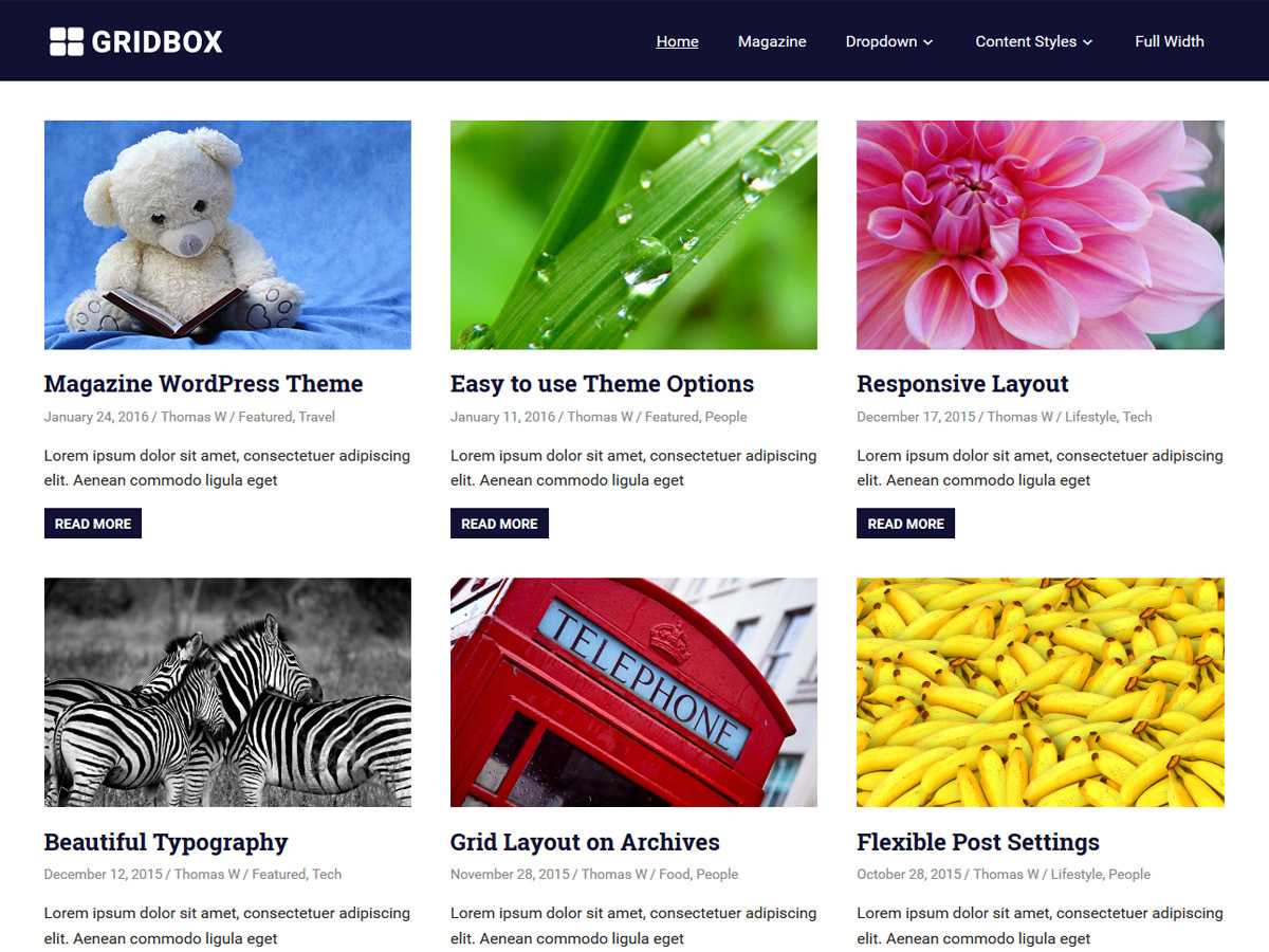Gridbox WordPress magazine theme
