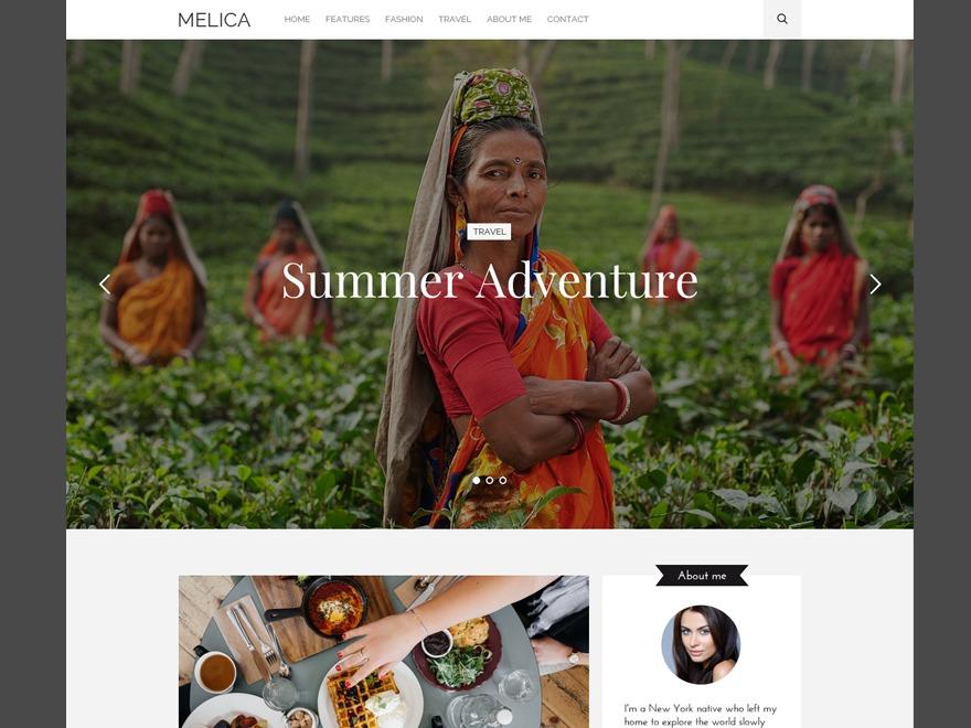 Melica WP theme WordPress blog theme