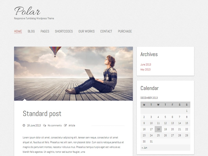 Polar Lite free WordPress theme