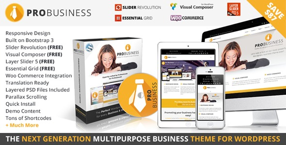 probusiness Child WordPress template for business