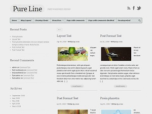 Pure Line WordPress magazine theme