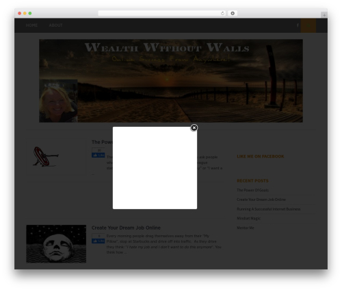 Free WordPress Custom Banners plugin - wealthwithoutwalls.net