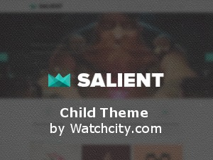 Theme WordPress Salient Child
