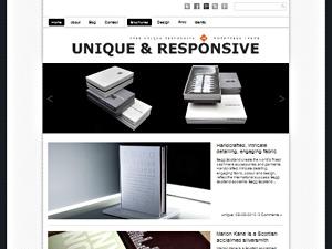Unique Theme Responsive WordPress blog theme