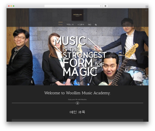 WordPress theme Avada - wlmusic.co.kr