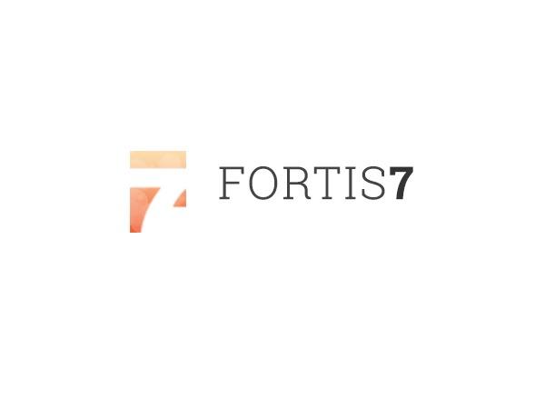 WordPress theme Fortis7