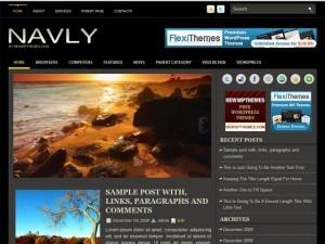 WordPress website template Navly