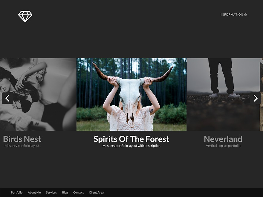 WordPress website template Talent