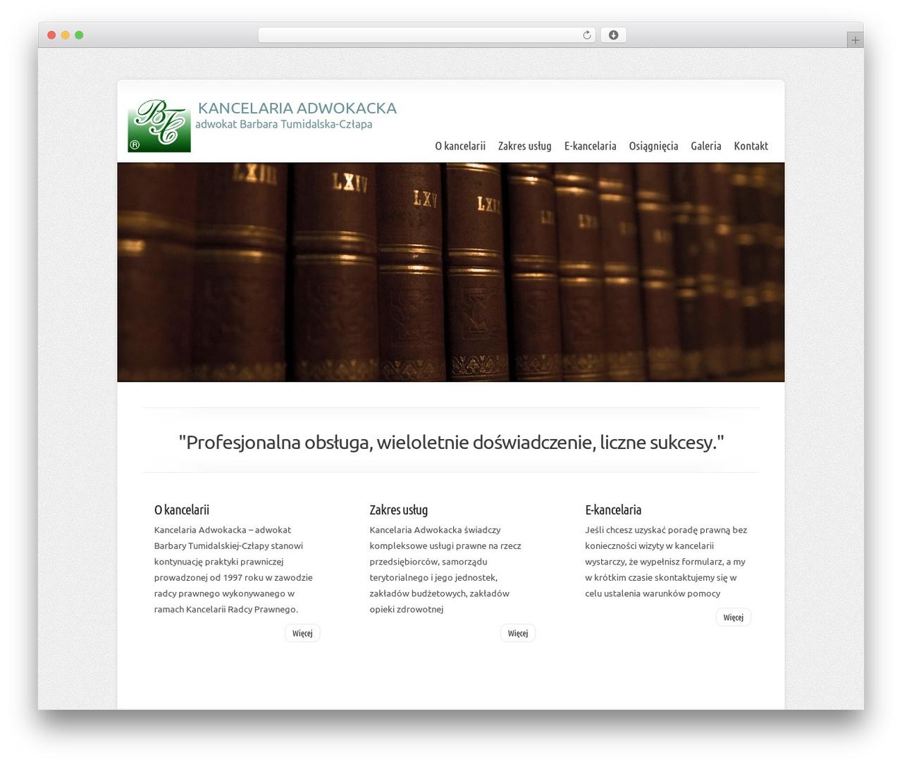 Chameleon best WordPress theme - tumidalska.pl