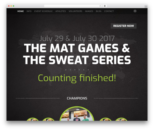 Fest WordPress gaming theme - thematgames.com