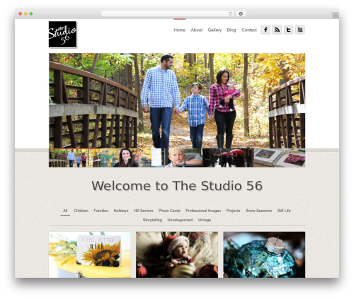 Free WordPress Image Watermark plugin - thestudio56.com