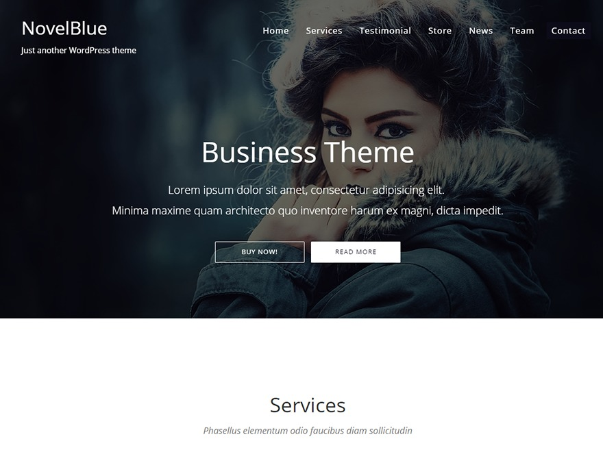 NovelBlue WordPress theme image