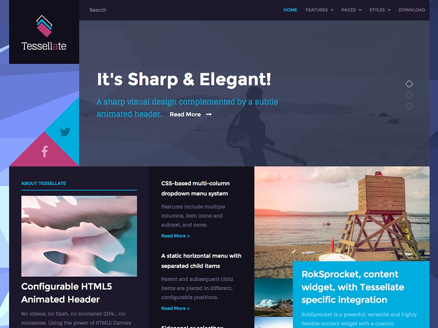 Tessellate WordPress website template