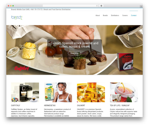 Businessweb Plus WordPress theme free download - brandzme.com