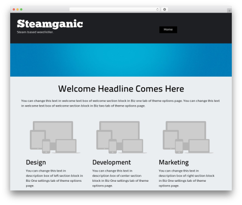 ThemeAlley.Business.Proo company WordPress theme - steamganic.com
