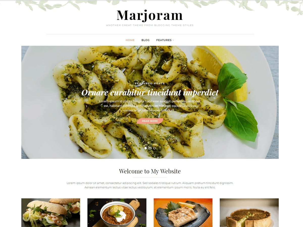 Marjoram Pro WordPress blog theme