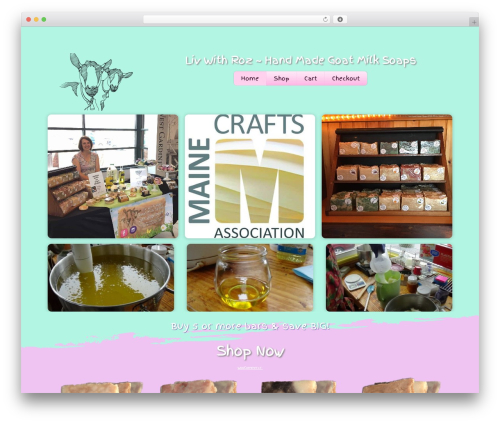 Themify Shoppe WordPress store theme - livwithrozsoap.com