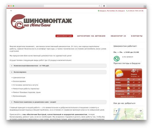 Conica theme WordPress free - shinkon.ru