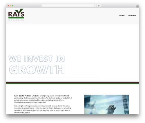 WordPress theme Zoomba - rayscapital.com