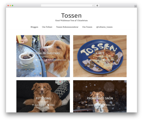 Freedom theme WordPress - tossen.se