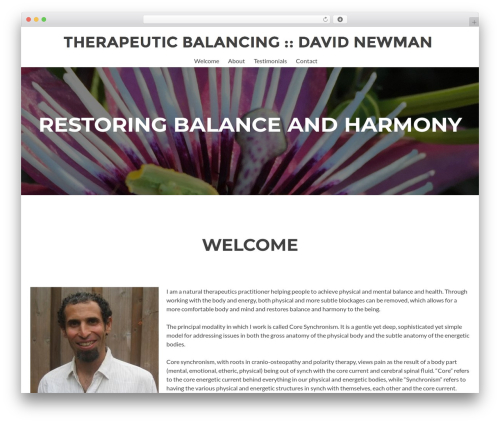 Zerif Lite free WP theme - therapeuticbalancing.com