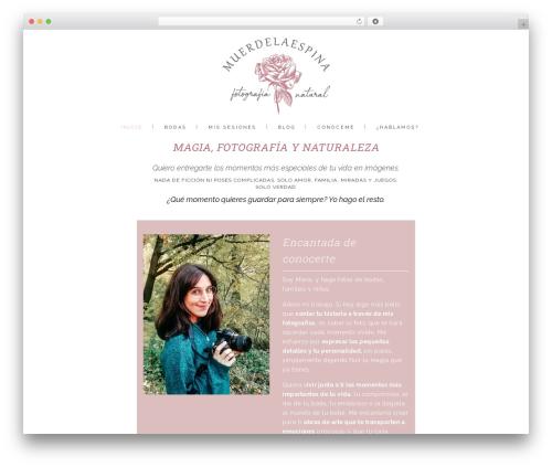 WordPress website template Stockholm - muerdelaespina.com