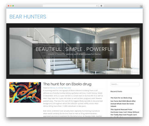 Conica theme WordPress - tnbearhunters.com