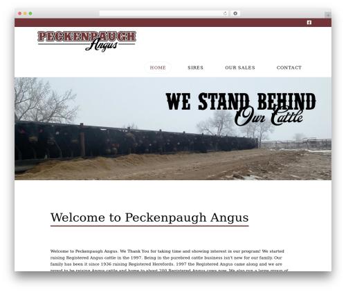 X WordPress website template - peckenpaughangus.com