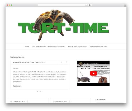 Clearsky WordPress theme - tort-time.org