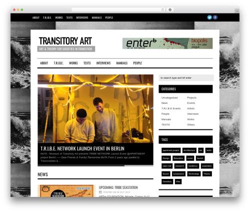 Hades WordPress theme - transitoryart.org