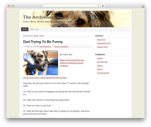Prose WordPress theme design - thearchieness.com