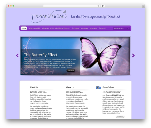 TheProfessional template WordPress - transitionsaz.org