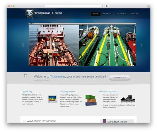 WordPress template Envision Child - tradeinseasltd.com