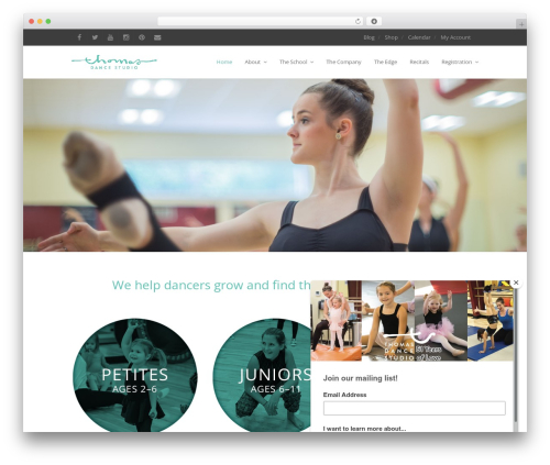 Free WordPress Instagram Feed plugin - thomasdance.com