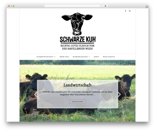 Edge WordPress theme free download - schwarze-kuh.farm