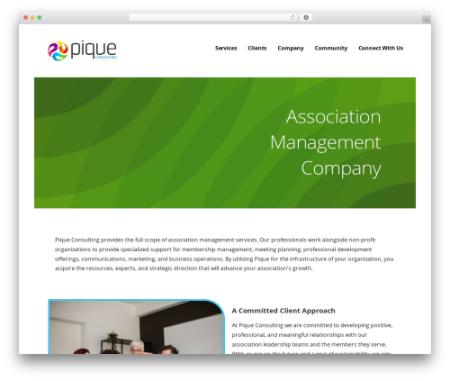 Ascension theme WordPress - piqueconsulting.net