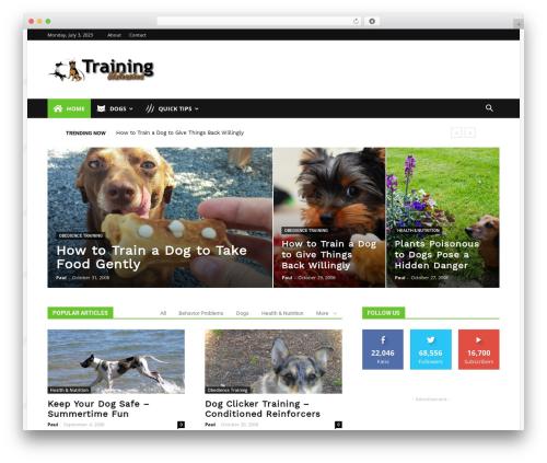 Newspaper WordPress news theme - trainingunleashed.com