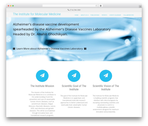 Innovation Extend WordPress theme design - immun-immed.org