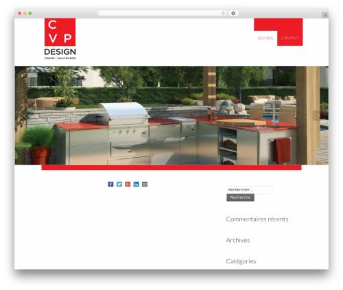 Striking MultiFlex & Ecommerce Responsive WordPress Theme WP template - cuisinecvpdesign.com