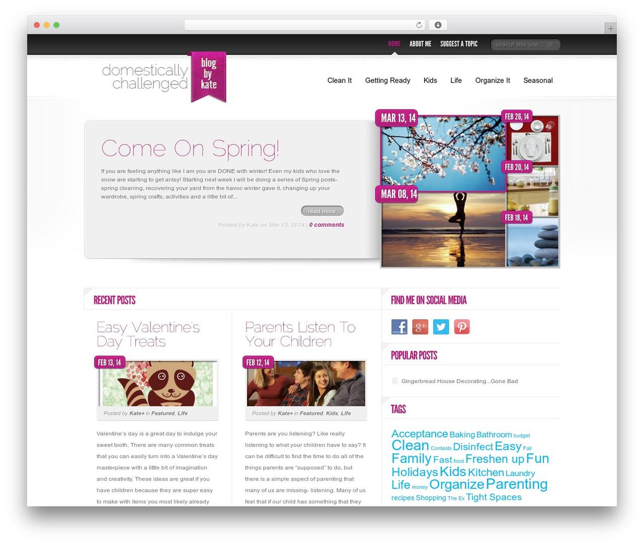 Delicate News newspaper WordPress theme - domesticallychallenged.net