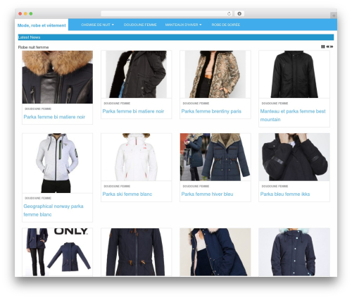 Theme WordPress LevelPro - christifashion.fr