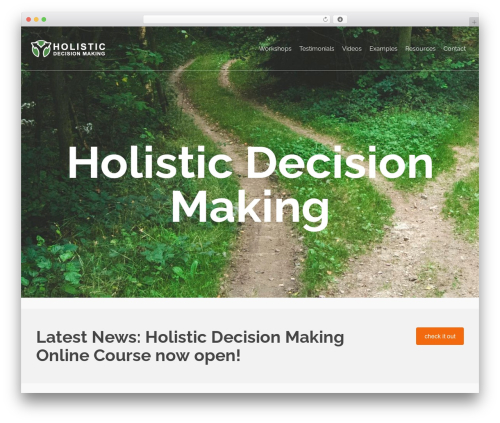 WordPress website template Holistic Decision Making Theme - holisticdecisionmaking.org