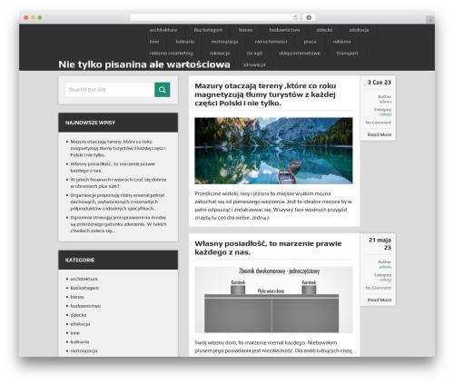 DualShock by MyThemeShop WordPress ecommerce template - stronaoniczym.pl