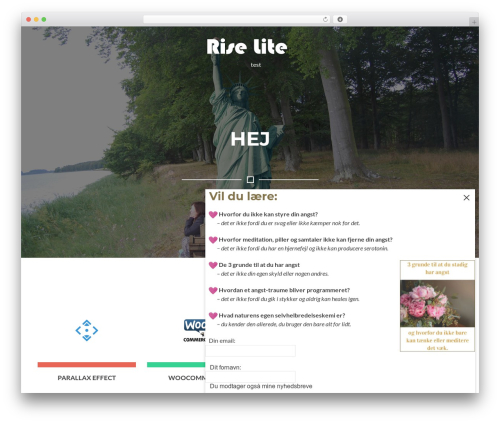 Rise Lite WordPress theme design - bidstrup.info
