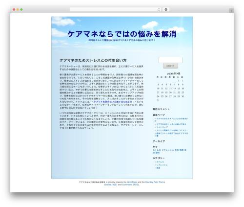 WordPress website template BlueSky - realtynegotiations.info