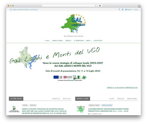WordPress dlm-page-addon plugin - gallaghiemonti.it