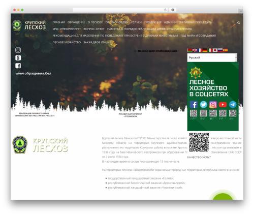 Swiftbiz Lite WordPress theme design - kruples.by