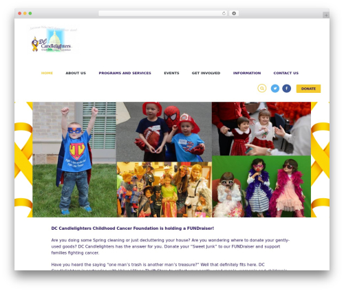 WordPress theme Charity Is Hope - dccandlelighters.org