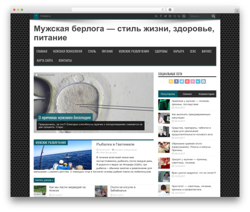 WordPress theme Jarida - infomangid.ru