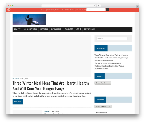WordPress theme MH Newsdesk lite - 8joy.net